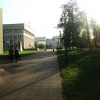 Прямо пойдёшь в Администрацию Люберецкого города придёшь... :: Ольга Кривых