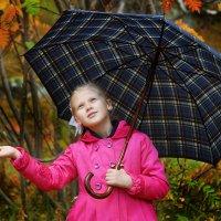 После дождя :: Роман Маркин