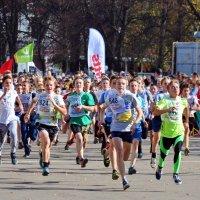 Кросс нации 2015. :: Юрий Толстогузов