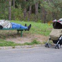 Не ходите дети с папами гулять. :: Дмитрий Гончаренко