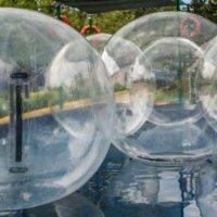 пузырики :: Svetlana AS