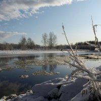 Первый снег :: Марат Шарипов