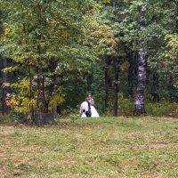 Осенние хлопоты :: Виталий