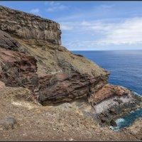 Madeira, with love. :: Jossif Braschinsky