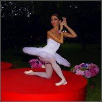 Белый Лебедь---09 :: Владимир Холодный