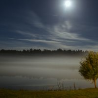 ночь туман :: Artūras