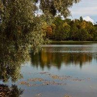 Осень в Пушкине :: Ирина Варская