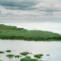 Пейзаж - природа (пленочное фото) :: Евгений Дмитриев