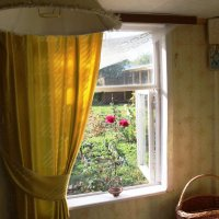 Вид из окна в саду :: Damir Si