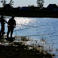 На рыбалке :: николай матюшенков