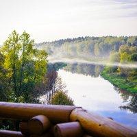 река Руза :: Андрей Куприянов
