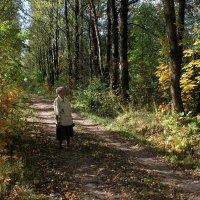 Осень жизни, как и осень года... :: Наталья Лунева