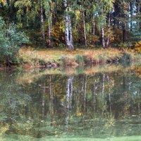 Осенние отражения :: Виталий