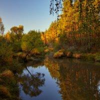 Шередарьская осень... :: Roman Lunin