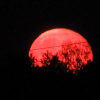 Восход Луны :: Mariya laimite