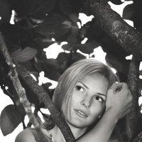 портрет :: Майя Стороженко