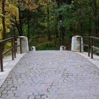 На мосту. :: Oleg4618 Шутченко