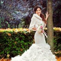 Осенняя свадьба :: Андрей Молчанов