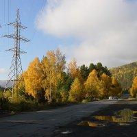 Осень. :: Николай Елисеев