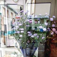 цветы сентября :: Маргарита Лапина