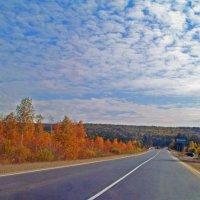 Дороги Сибири :: alemigun