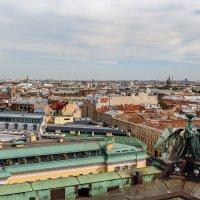 На крышах Санкт-Петербурга (1) :: Николай Николенко