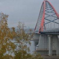 Бугринский мост :: Андрей Ягодко