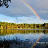 На озере :: николай матюшенков