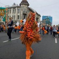 День тигра. Хроники :: Sofia Rakitskaia