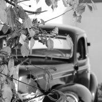 Ford 1939 :: Nataly Spielmann
