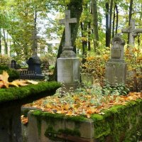 Сентябрь в Питере, на Волковом кладбище. :: Валерий Симонов