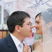 Выкупил невесту, ура в загс! :: Людмила Огнева