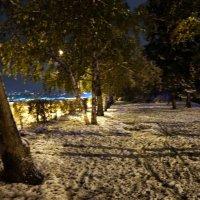Вечерний снег. :: Наталья Тимофеева