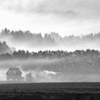Утренний туман :: Сергей Компаниец