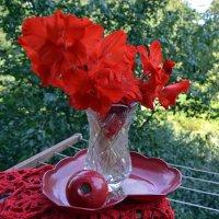 Лето красное уходит... :: Raisa Ivanova