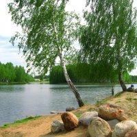 Этюд на озере. :: Александр Атаулин