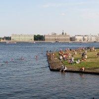 Пляж у Петропавловки :: Георгий Кашин