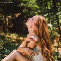 Фея леса :: Евгения С