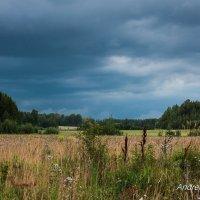 Перед грозой :: Андрей Катаев
