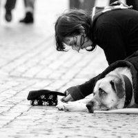 Андрей Ершов - Смирение :: Фотоконкурс Epson