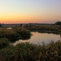 Осеннее утро на реке.. :: Ксения Довгопол