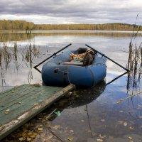 На озере. :: Владимир Терехов