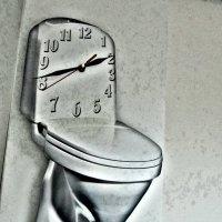 В туалет по-времени! :: Ростислав