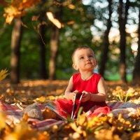 Осень :: Ya-kadr.ru Детский фотограф