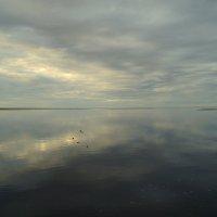 Где небо сливается с морем... :: Елена Перевозникова