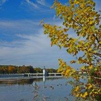 Желаю прекрасной Осени!!! Не забывайте, что главная погода — это та  -  что в душе, а не за окном! :: Galina Dzubina