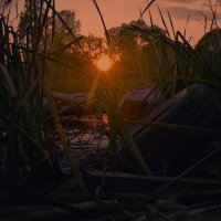 Теплый, осенний вечер у озера. Шарм autumn evening by the lake. :: krivitskiy Кривицкий