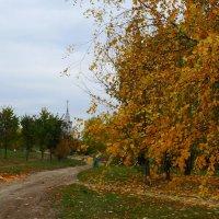 Осенний этюд №2 :: Александр Атаулин