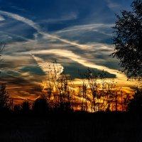 Палитру красок в небесах.... :: Анатолий Клепешнёв
