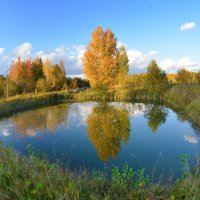 Старый пруд :: Борис Гуревич